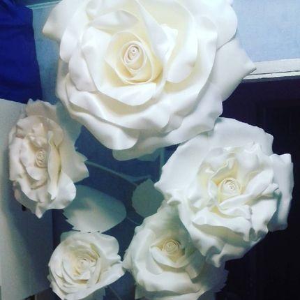 Огромные розы для фоосессий