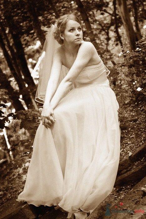 Фото 52858 в коллекции Свадебная фотосъемка в стиле ретро