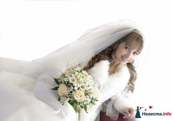 Фото 111249 в коллекции Wedding - Oktava