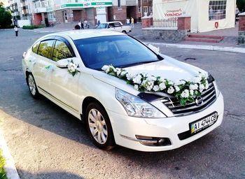 141 Nissan Teana белая в аренду