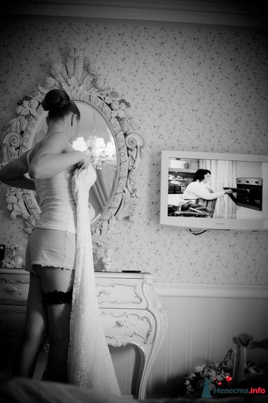 Фото 117595 в коллекции Мои фотографии - VOLKODAVVNV