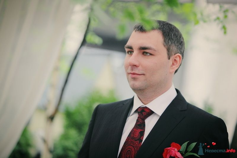 Фото 123313 в коллекции Мои фотографии - VOLKODAVVNV