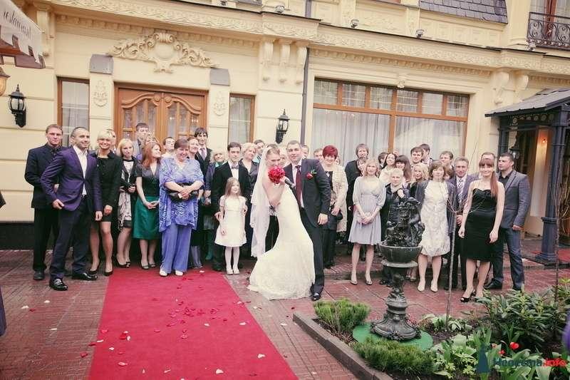 Фото 123322 в коллекции Мои фотографии - VOLKODAVVNV
