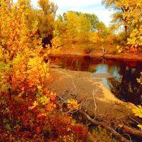 Осень, октябрь_4