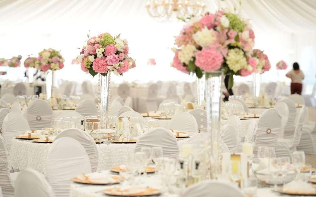 """Фото 18159754 в коллекции Wedding catering - """"Regatta Catering"""" - кейтеринг"""