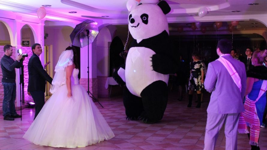 Танцы с 3-х метровой пандой