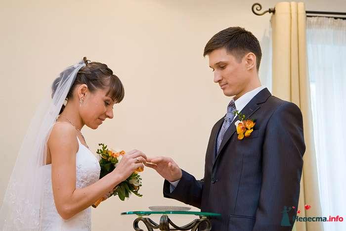 Фото 94064 в коллекции Свадьба 16.04.2010 - Дарьяночка