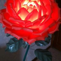 Ростовые цветы красные в аренду