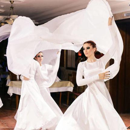Танцевальный перфоманс Лебеди