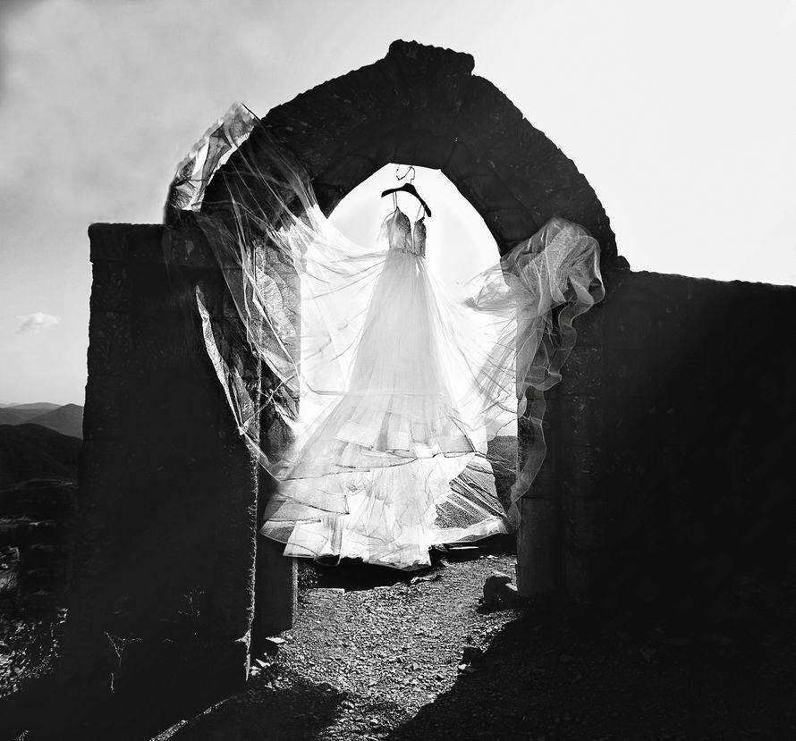 Фото 19015258 в коллекции Портфолио - Фотограф Макс Темников