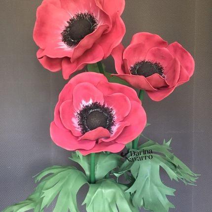 Ростовые цветы Анемон