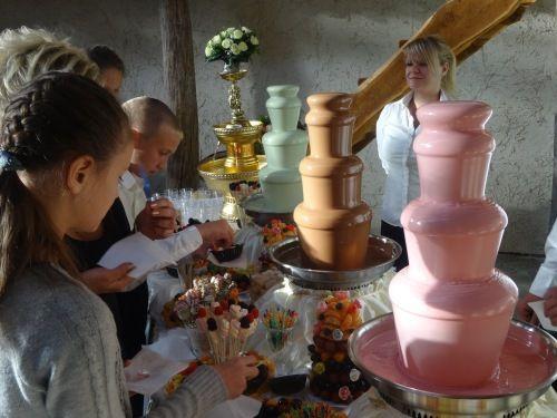"""Фото 15086418 в коллекции Свадьбы с нашими шоколадными фонтанами. - Кондитеры """"Шоколадная радуга"""""""