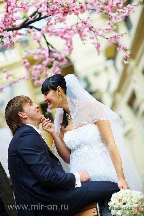 Фото 64975 в коллекции Наши клиенты! - МирОн - ваше свадебное агентство