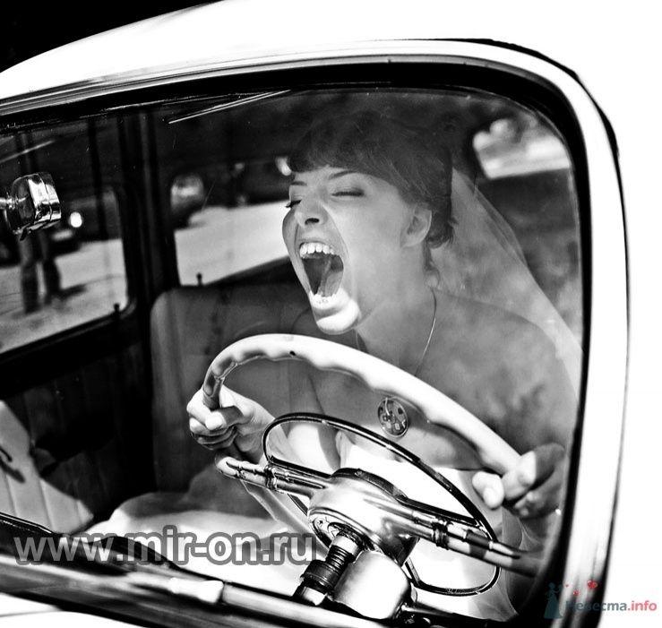 Фото 64978 в коллекции Наши клиенты! - МирОн - ваше свадебное агентство
