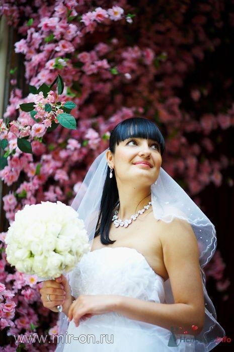 Фото 64980 в коллекции Наши клиенты! - МирОн - ваше свадебное агентство
