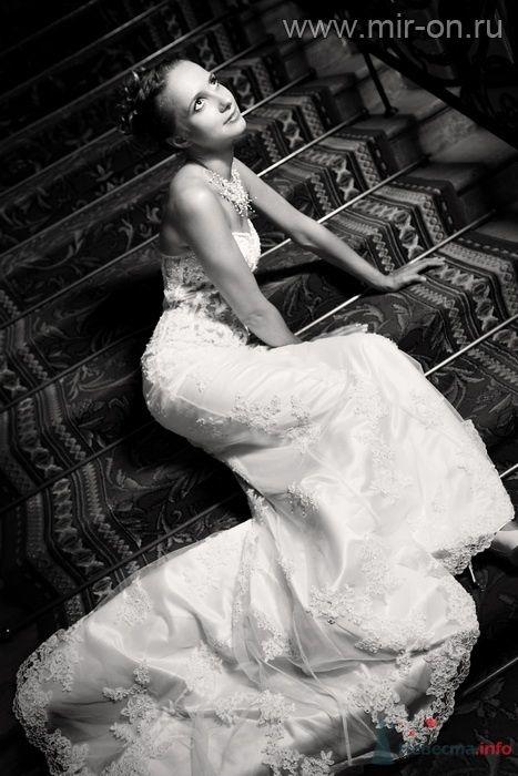 Фото 64981 в коллекции Наши клиенты! - МирОн - ваше свадебное агентство