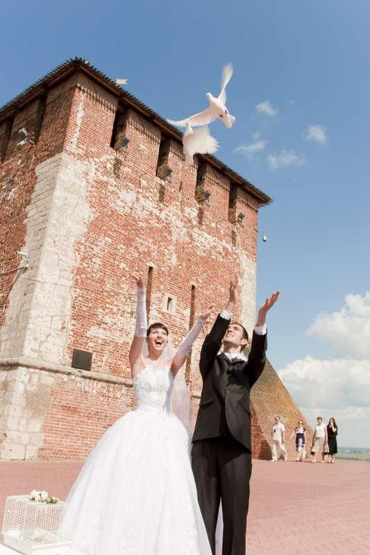 Фото 19106922 в коллекции Свадебный альбом 2008 - Фотограф Александр Юсов