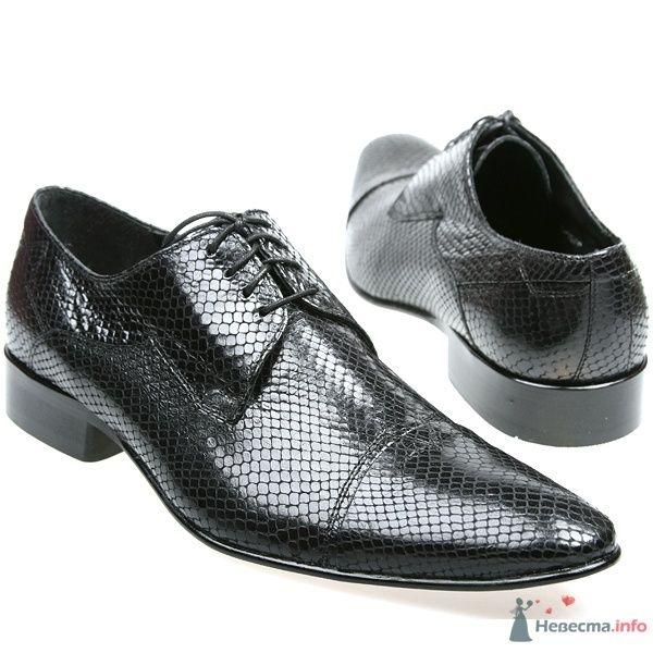 Мужские черные кожаные модельные туфли с острым носком и со шнурками