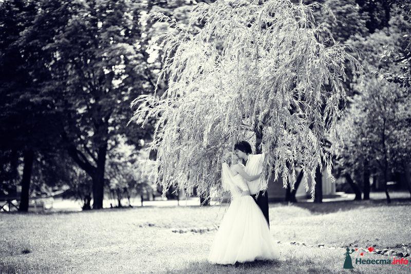 Фото 127948 в коллекции Мои фотографии - Манюнька