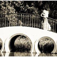 Координация свадьбы