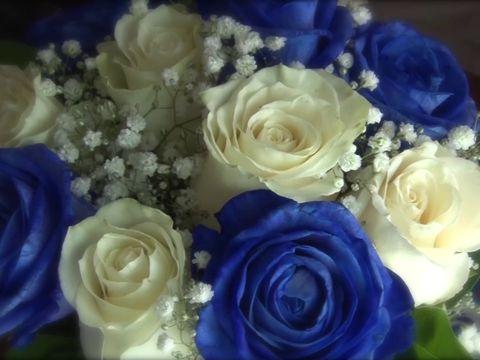 Свадьба Юрия и Вероники 9.06.2017