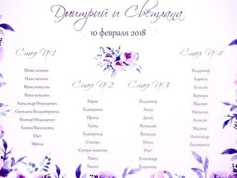 Светлана и Дмитрий, 10.02.18г.
